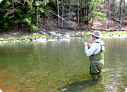 upper delaware river fly fishing