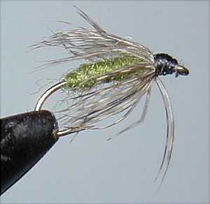 wet flies work on the upper delaware river, Fly Fishing Bait